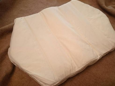 購入した六角脳枕