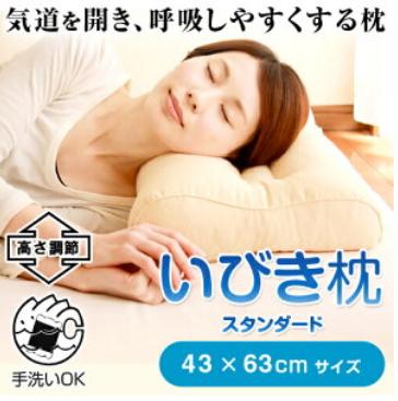 いびき対応枕 スタンダード